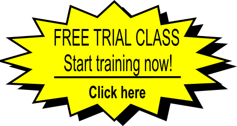 free-martial-arts-class-san-diego-carmel-valley-92130