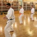 Karate Pinan Shodan Kata | San Diego Dojo