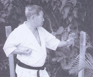 makiwara-meitoku-yagi