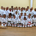 Arrowhead-Karate-Camp-2016-Group-Photo