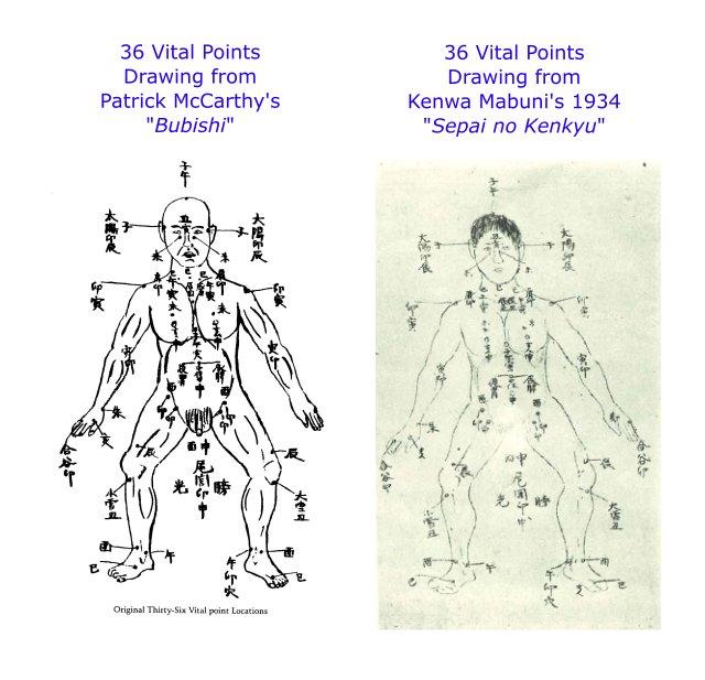 bubishi-36-vital-points