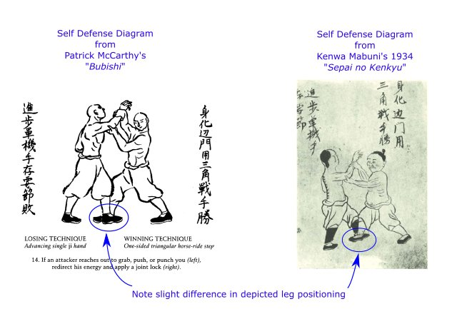 bubishi-48-self-defense-diagrams-comparison