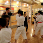 Practical-Karate-How-to-Hit-Hard-Impact-Training-Program