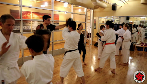 Practical-Karate-How-to-Hit-Hard-Impact-Training-Program